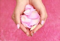 Handen met bloemblaadjes Stock Afbeelding