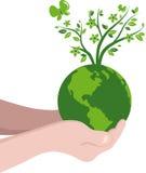 Handen met een groene bol Stock Afbeelding