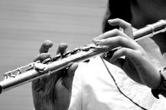 Handen met fluit Stock Foto
