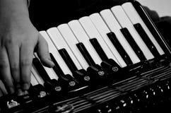Handen met harmonika Royalty-vrije Stock Afbeelding