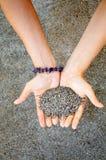 Handen met nat zand Stock Afbeeldingen