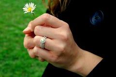 Handen met ring en madeliefje Stock Fotografie