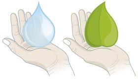 Handen met waterdaling en blad Stock Foto