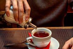 Handen sätter socker i kopp med te royaltyfri foto