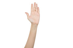 Handen som lyfter för, röstar Fotografering för Bildbyråer