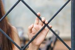 Handen - välj buren Arkivfoton
