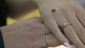 Handen van de bruid en de bruidegom Lieveheersbeestje die langzaam door huwelijk en verlovingsringen van bruid kruipen Langzame M stock video