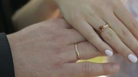 Handen van de bruid en de bruidegom Lieveheersbeestje die langzaam door huwelijk en verlovingsringen van bruid kruipen Langzame M stock footage