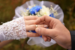 Handen van de jonggehuwden met ringen Stock Afbeeldingen