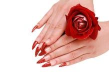 Handen van de vrouw met rood namen toe Royalty-vrije Stock Foto's