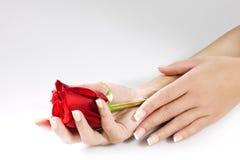 Handen van de vrouw met rood namen toe Stock Foto