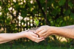 Handen van een mens en een kind die een jonge plant houden tegen een groene natuurlijke achtergrond in de lente Het exemplaarruim royalty-vrije stock fotografie