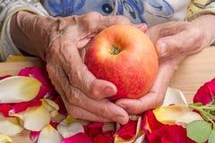 Handen van een oude vrouw met een appel stock fotografie