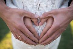 Handen van familieleden die een buik van zwangere vrouw houden Royalty-vrije Stock Foto