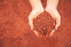 Handen van mensen die grond houden om jonge plant te kweken Ecologie en gr. stock foto