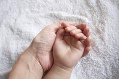 Handen van moeder & jong geitje Royalty-vrije Stock Afbeeldingen