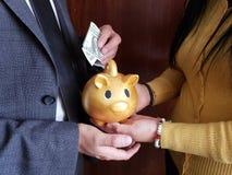 handen van vrouw die een spaarvarken van een gouden varken en een hand van de mens houden die een Amerikaanse dollarrekening bewa stock afbeelding