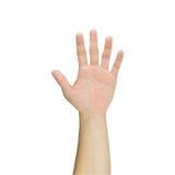 Handen visar fem fingrar som isoleras på vit bakgrund Arkivbild