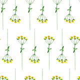 Handfarbenrahmen der Aquarellblume Lizenzfreies Stockfoto