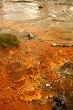 handfatgeyser yellowstone Arkivfoto