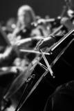 Handflicka som spelar violoncellen royaltyfria bilder