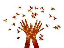 Handfreigabe die Vögel Stockfoto
