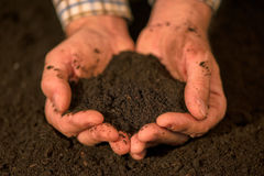 Handful of arable soil in hands of responsible farmer. Handful of arable soil in hands of responsible male farmer, close up, selective focus Stock Image