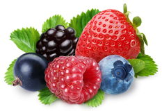 Handful of berries stock image