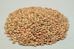 A handful of brown spanish lentils on gray background Stock Photo