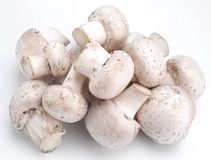 Handful of champignons Royalty Free Stock Images
