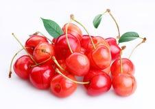 Handful of cherries stock photography