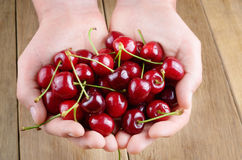 Handful of cherries Stock Image