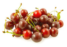 Handful of cherry Stock Photo