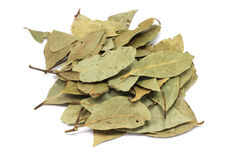 Handful of dried bay leaves. On a white background royalty free stock photo