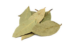 Handful of dried bay leaves. On a white background royalty free stock photography