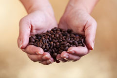 Handful of fresh roasted coffee Stock Photography