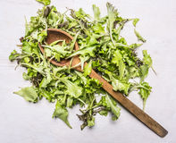 Handful fresh salad Lollo rosso with a wooden spoon,  on wooden rustic background top view close up Stock Images