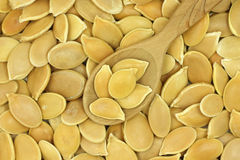 A handful of golden pumpkin seeds in a wooden spoon  background Royalty Free Stock Image