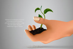 Handful of ground with green sprout in her hands Royalty Free Stock Images