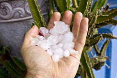 Handful of Hail Stock Photography