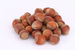 Handful of hazelnuts Stock Images