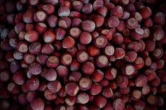 Hazelnuts. Fresh hazelnuts from asia minor Royalty Free Stock Photos
