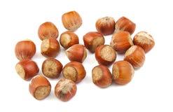 Handful of hazelnuts Stock Photos