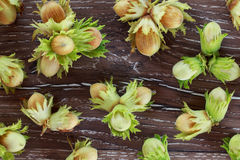 The handful of hazelnuts Royalty Free Stock Images