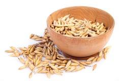 Handful oats Stock Photography