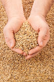 Handful oats Royalty Free Stock Photo