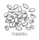 Handful of pistachio nuts. Royalty Free Stock Photos