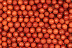A handful of red berries Viburnum  background Royalty Free Stock Photos