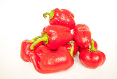Handful of red bulgarian peppers Royalty Free Stock Images