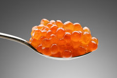 Handful of red caviar in spoon Stock Images